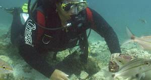 Ocean Centro de Mergulho